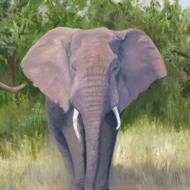 Deborah Butts - Elephant Walk