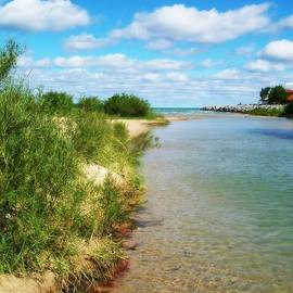Elk River With Fluffy Clouds by Michelle Calkins