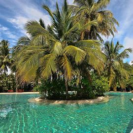 Emerald Paradise. Sun Island Resort. Maldives by Jenny Rainbow
