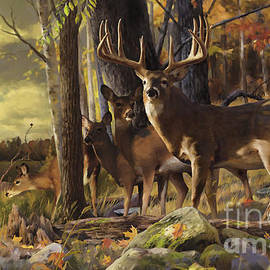 Rob Corsetti - Eminence at the Forest edge