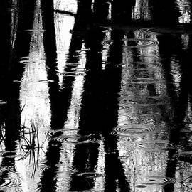 Steven Milner - Emotional Crossing - Natures Tear Drops