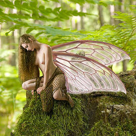 Tbone Oliver - Enchanted fairy