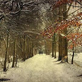 Annie Snel - Enchanting Dutch Winter Landscape