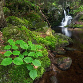 Enders Falls Green Square by Bill Wakeley