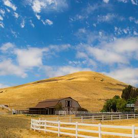 Entering The Napa Valley by Rima Biswas