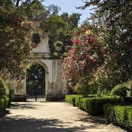 Sandy Molinaro - Entrance to a Secret Garden