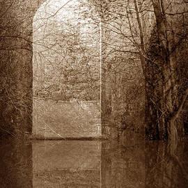 Entranced by Liz  Alderdice