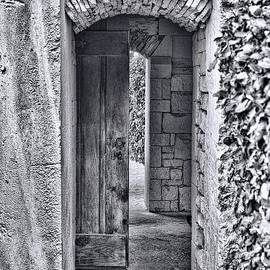 Entrancing Entrance in Monochrome by Delilah Downs