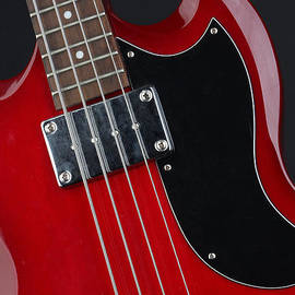 Epiphone SG Bass-9193 by Gary Gingrich Galleries