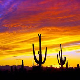 Equinox Sunset by Douglas Taylor