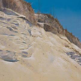 Christopher Reid - Eroding Dune