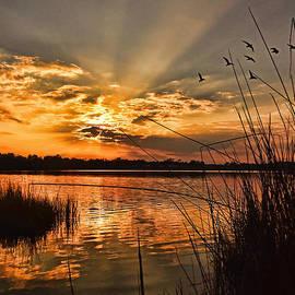 Evening Calm by Kelley Freel-Ebner
