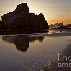 Evening Serenity - Oregon by Sandra Bronstein