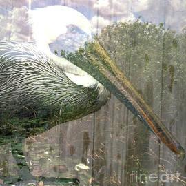 Thomas Levine - Everglades Collage
