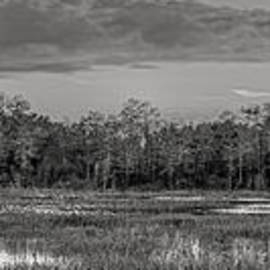 Debra and Dave Vanderlaan - Everglades Panorama BW