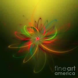 Hanza Turgul - Exotic Lotus