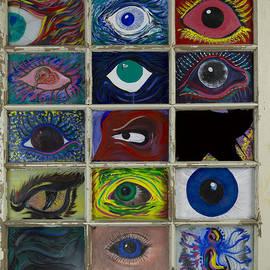 Eyes Windows Soul by Doug LaRue