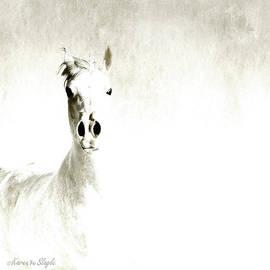 Karen Slagle - Fade to White