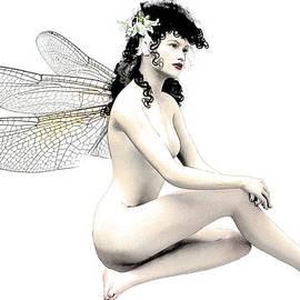 Quim Abella - Fairy Fortune