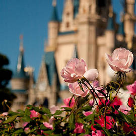 Fairytale Garden by Kristia Adams