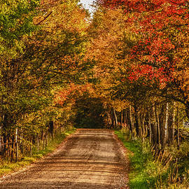 Fall Color Along A Dirt Backroad by Jeff Folger