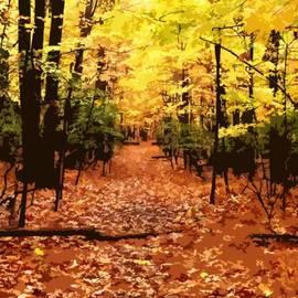 Jefferson Hobbs - Fall Path