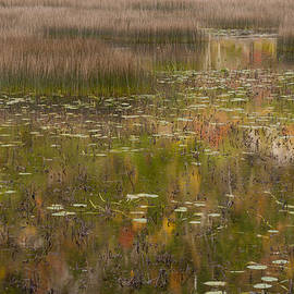 Fall Reflections in the Tarn Acadia NP Maine by Greg Kluempers