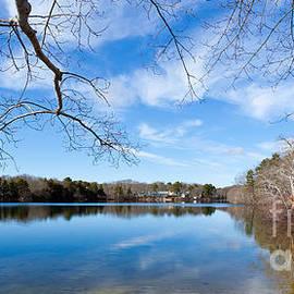 Michelle Wiarda - Fall Reflections