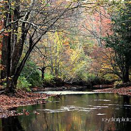 Rose Hart - Fall River