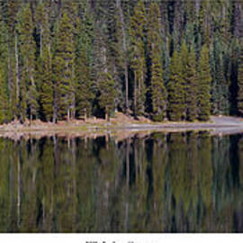 Twenty Two North Photography - Fall Tree on Elk Lake
