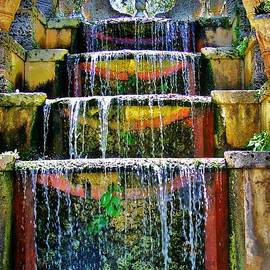 Falls At Vizcaya by Chuck  Hicks