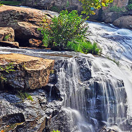Falls of Reedy River by Elvis Vaughn