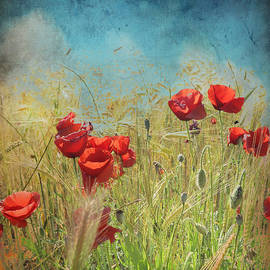 Fantasy poppies by Guido Montanes Castillo