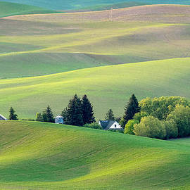 Farm Buildings Nestled In The Palouse Country by Victoria Porter