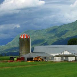 Ann Horn - Farm in the Valley
