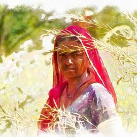 Sue Jacobi - Farmers Fields Harvest India Rajasthan 8