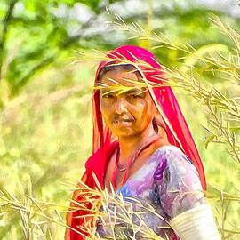 Sue Jacobi - Farmers Fields Harvest India Rajasthan 8b