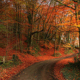 Fathers Day Fall Leaves by Sarah Broadmeadow-Thomas