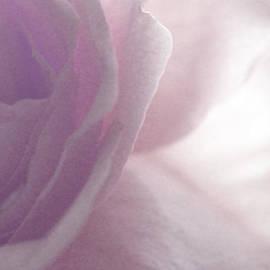 The Art Of Marilyn Ridoutt-Greene - Feeling Sensitive