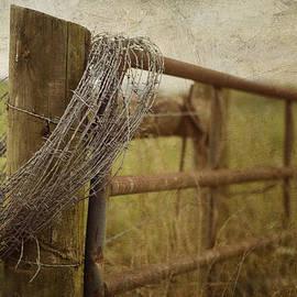 Kathy Jennings - Fence Post