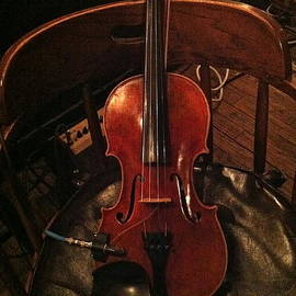 Fiddle by Denise Mazzocco