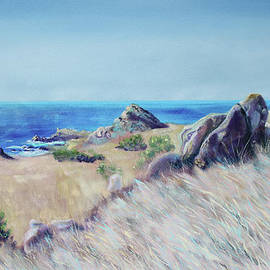 Fields with Rocks and Sea by Asha Carolyn Young