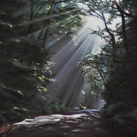 Christopher Reid - Filtered Light
