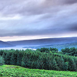 Finger Lakes Landscape by Steven Ainsworth