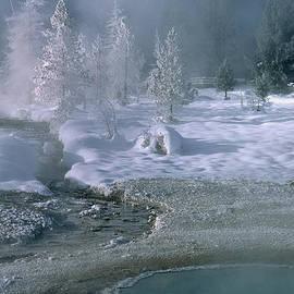 Sandra Bronstein - Fire and Ice - Yellowstone National Park