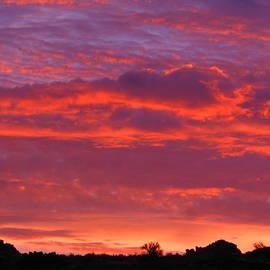 Fire In The Arizona Sky