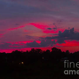 Fire In The Sky by Heather Roper