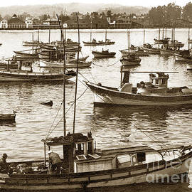 Fishing fleet in Santa Cruz Harbor California circa 1920 by California Views Archives Mr Pat Hathaway Archives