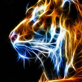 Shane Bechler - Flaming Tiger