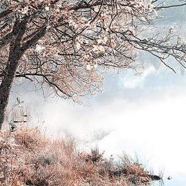 Floating Dream. Nature in Alien Skin by Jenny Rainbow